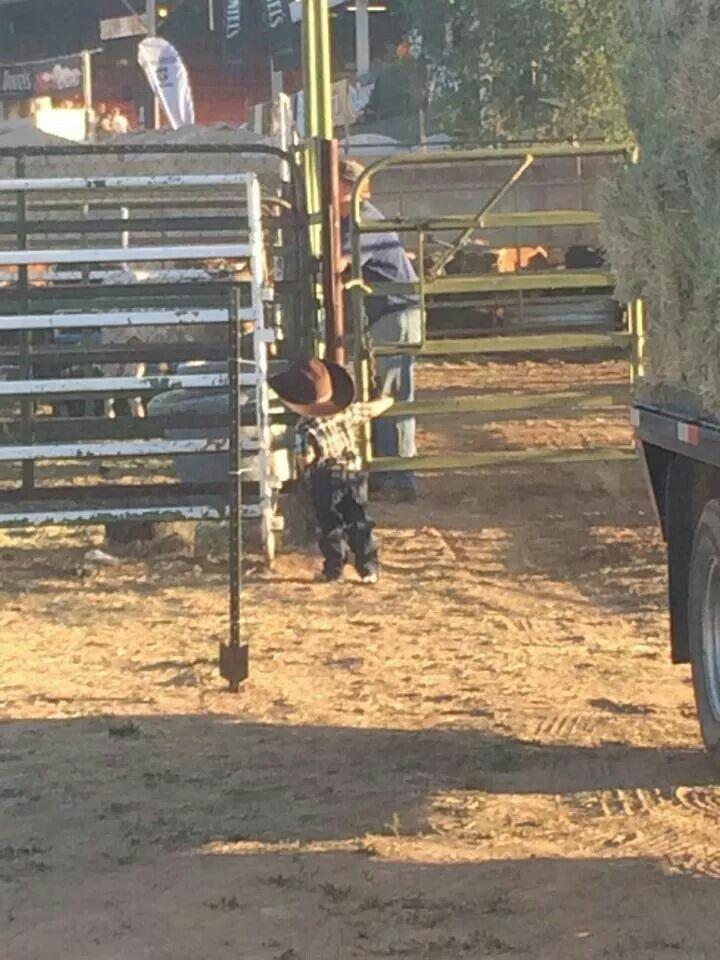 Prescott Rodeo 7/2/14