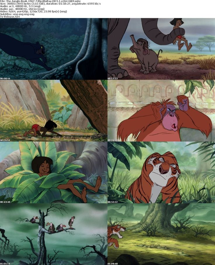 jungle book audio song free