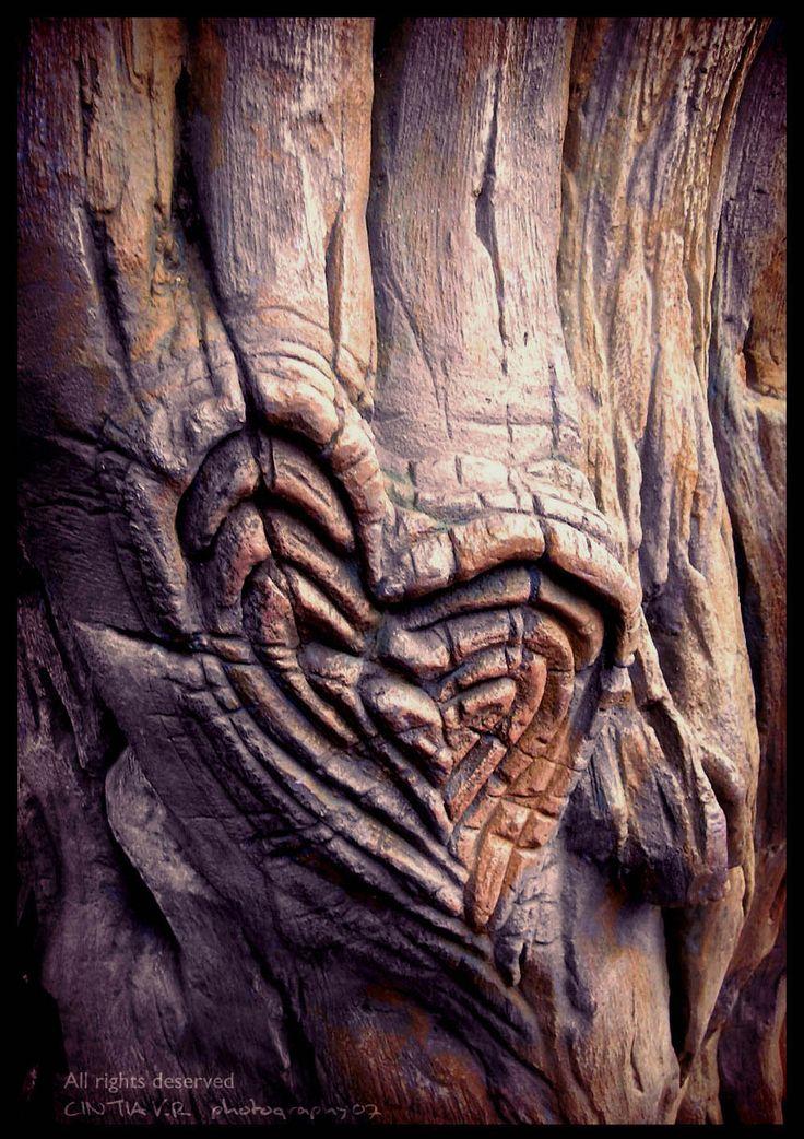 nice heart in wood