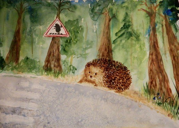 hedgehog Toshka crew cut   watercolor, Julia Latte www.delopodushe.org