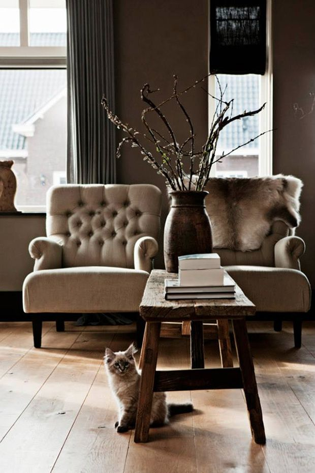 loving the chairs! and the cat