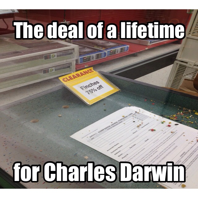 95c172465349af784444eee3b09ba662 biology memes biology lessons best 25 biology memes ideas on pinterest biology humor, science,Biology Memes