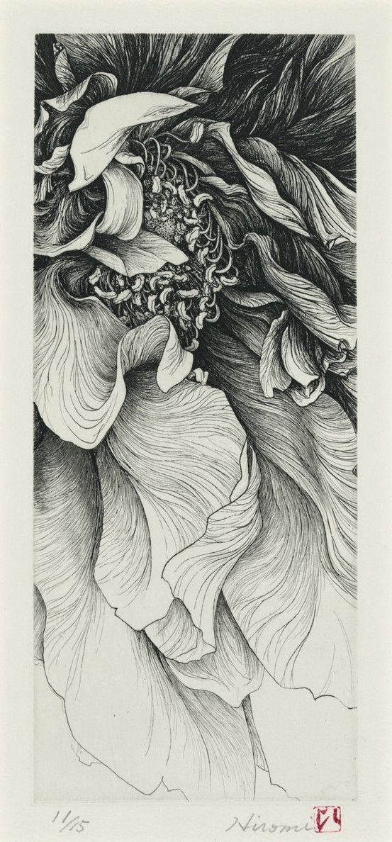 "Pen and ink flower. Incredible! ""Pen and ink of a flower is usually heavy on exaggerated values to deepen 3D effect of curves in images. This is most of the time very necessary in the choice of subject."" - Carlo de Leon Art Opinions™ #artopinions #carlodeleon:"