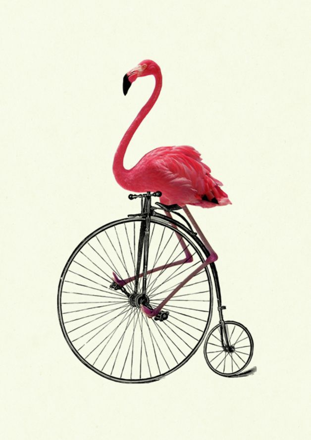 Pink Flamingo gentleman rides a Bike Bicycle Unicycle. Victorian Steampunk Collage of vintage victorian engravings, illustrations and my own drawings on fancy German Hahnemühle deckle edged...