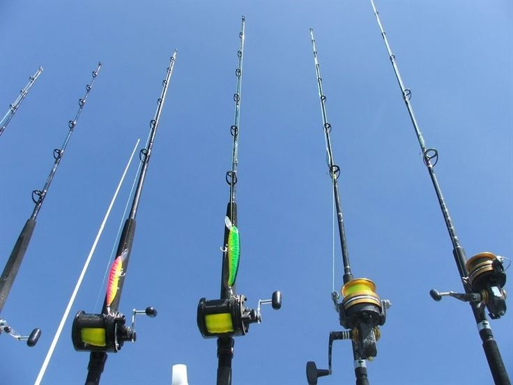 What Is The Difference Between Fishing Poles And Rods? http://gocostaricafishing.com/news/view/279/What_Is_The_Difference_Between_Fishing_Poles_And_Rods_.html?source=pi