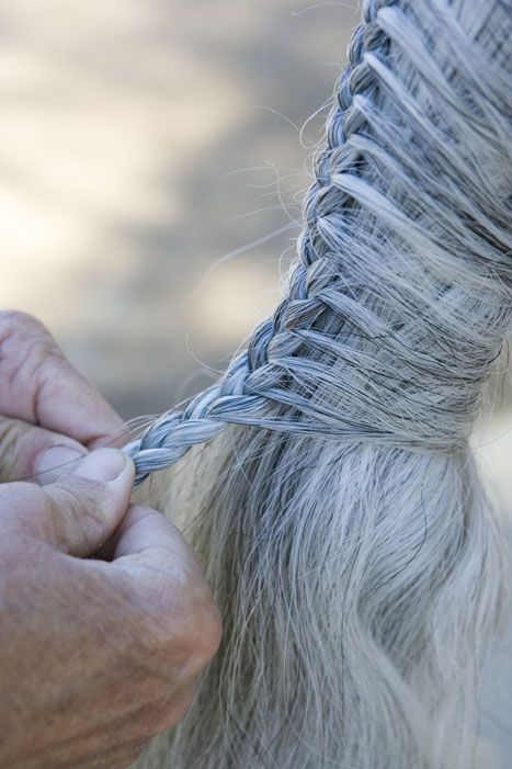How to braid your horse's tail.