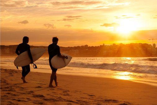 Bondi Surfers