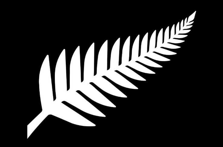 The long list: 40 new designs for New Zealand national flag