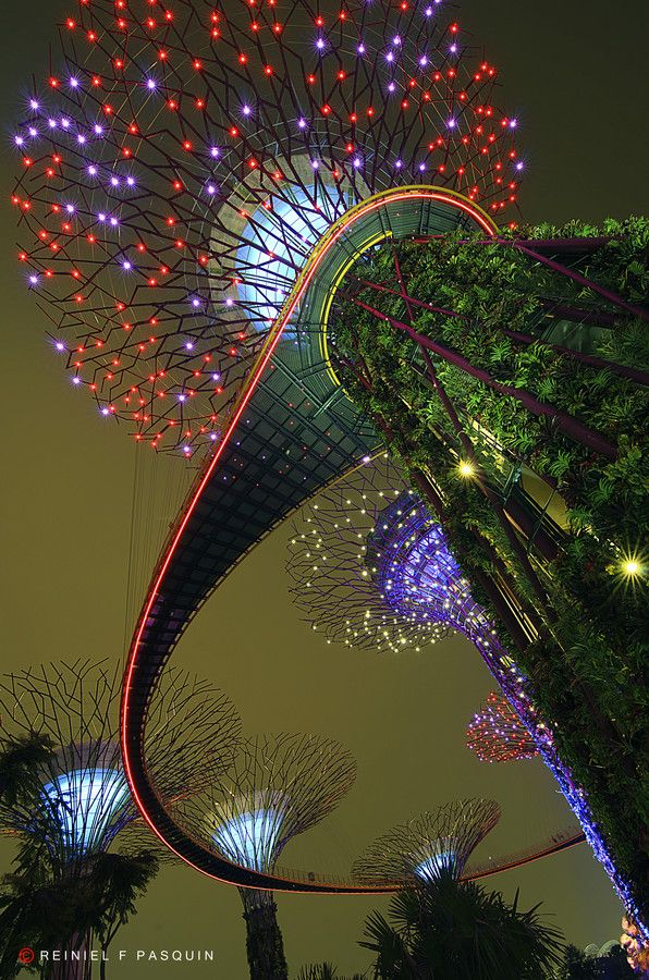 gardens by the bay super trees singapore - Garden By The Bay Music