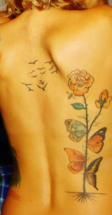 Butterfly rose; Dali  <3