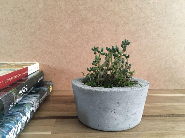 Handmade concrete planters