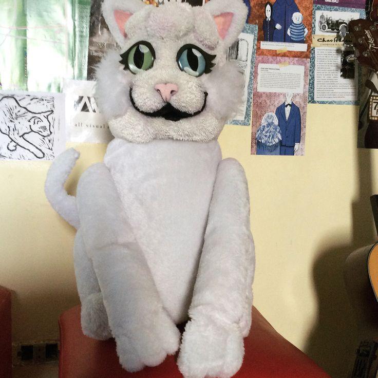 #foampuppet #puppet #cat #handmade #theatre #puppetry