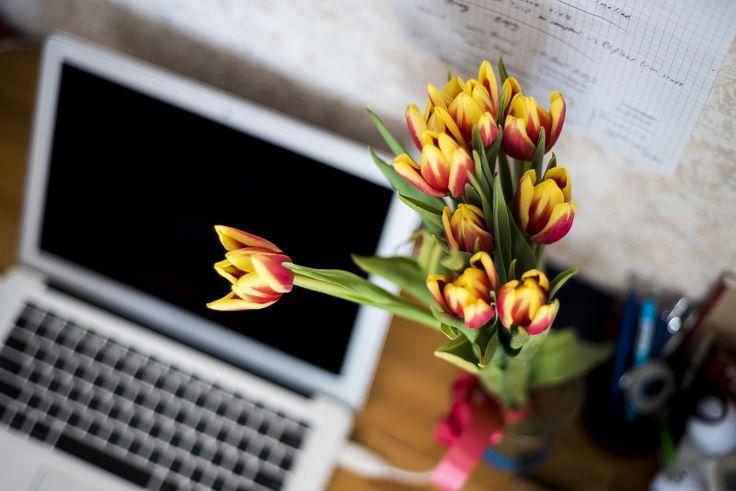 Vous souhaitez offrir des fleurs ? Découvrez le comparatif des 5 meilleurs fleuristes en ligne : Interflora, Florajet, 123Fleurs, Bebloom, Aquarelle, etc.