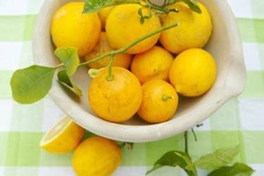 Lemon-infused oil – Recipes – Bite