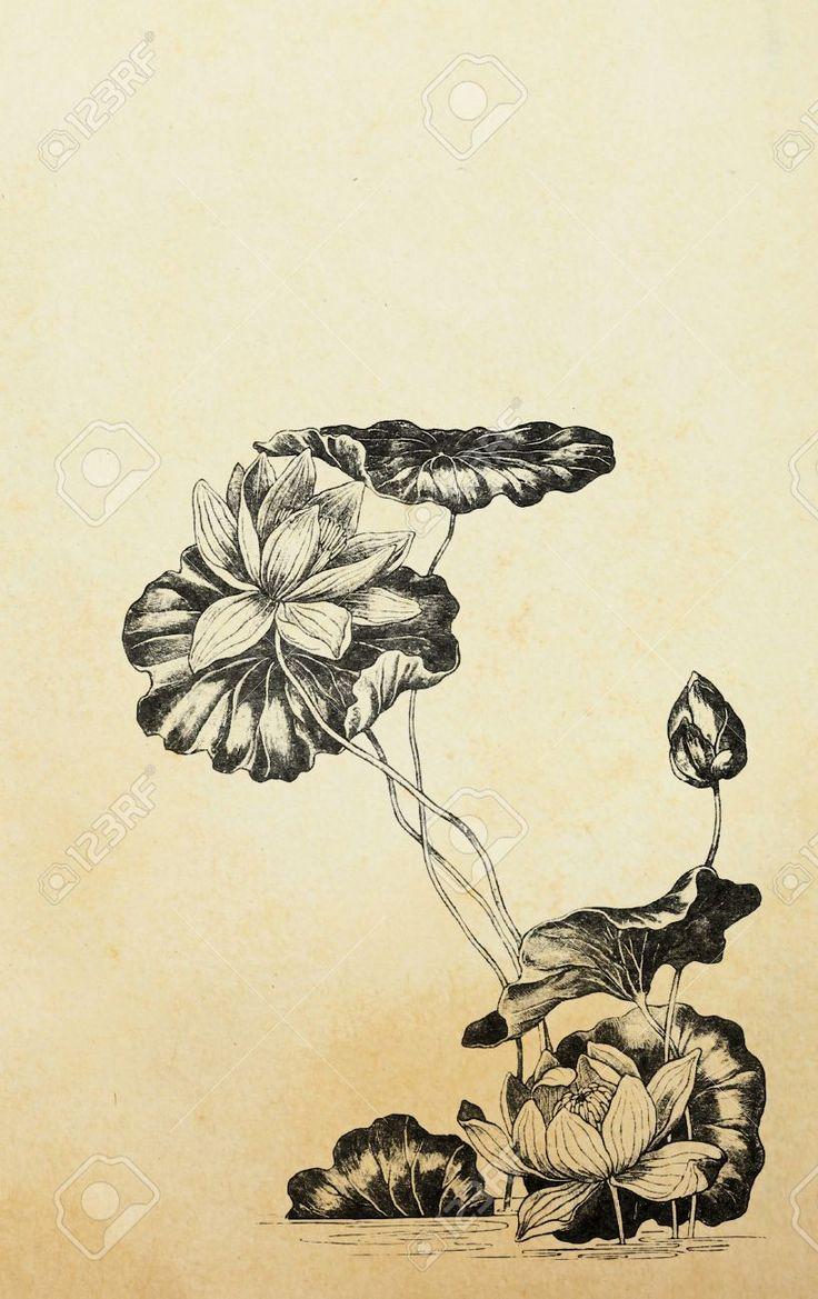 Цветы лотоса в стиле модерн на старой бумаге Фотография, картинки, изображения и…