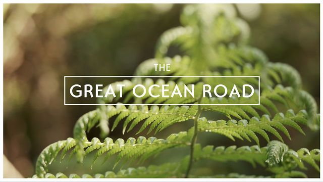 Great Ocean Road- Forest Adventure by Colour Chorus. The second from a new series of three Great Ocean Road films.