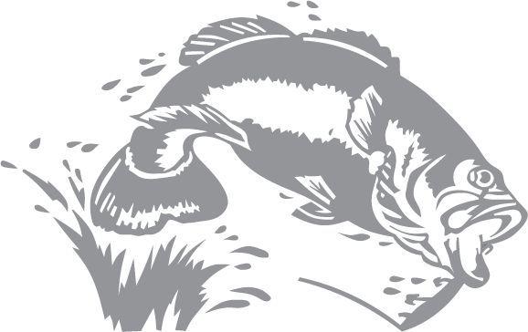 Free Largemouth Bass Stencils - Google Search