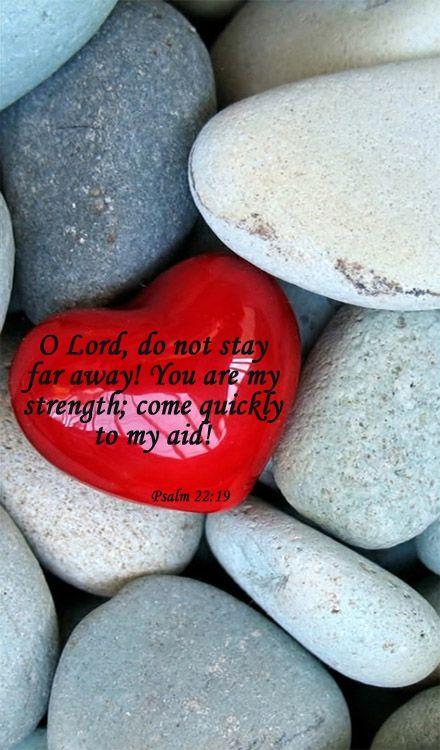 Episcopal Daily Lectionary for 7/11/14.  Psalm 22; Deut. 31:7-13,24-32:4; Rom 10:1-13; Matt. 24:15-31. http://bible.oremus.org/?passage=Psalm+22 - Music: http://youtu.be/L5swLYPPtyc