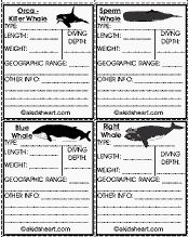 Whale Data Cards - great cards to print, cut out and fill with fun facts about whales and dolphins.