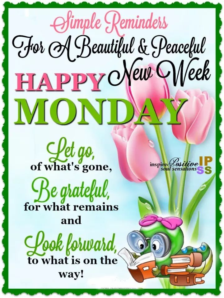 SIMPLE REMINDERS FOR A BEAUTIFUL & PEACEFUL NEW WEEK: HAPPY MONDAY !!!! LET GO, …