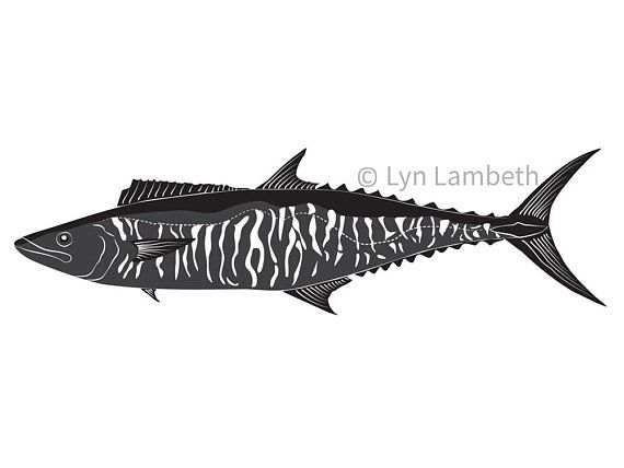 Fish clip art instant download, Spanish Mackerel, small business commercial use