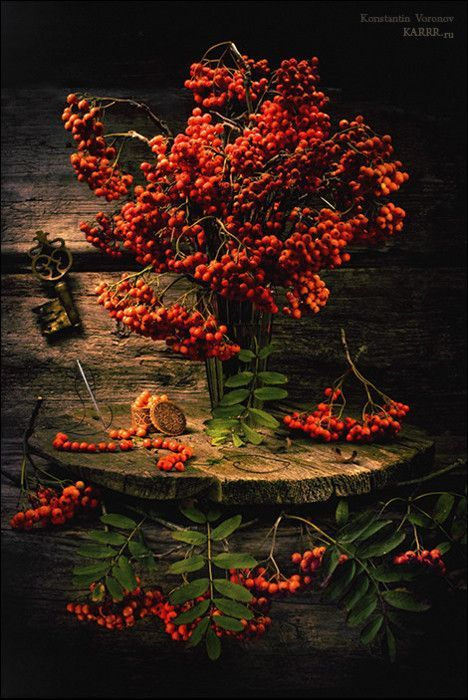 "witchyautumns: "" photo by Konstantin Voronov """