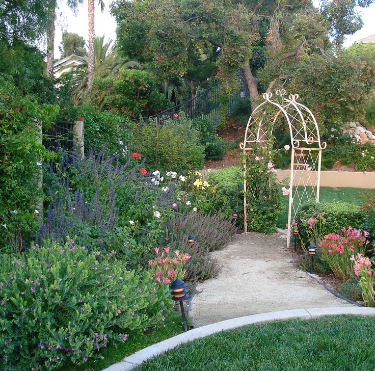 Drought Tolerant Front Yard: 17 Best Images About Front Yard Drought Tolerant Landscape