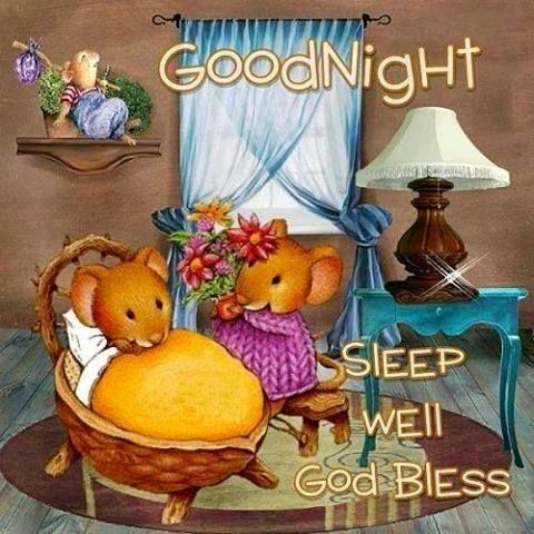 Good Night sister and all,have a peaceful night,God bless,xxx❤❤❤✨✨✨