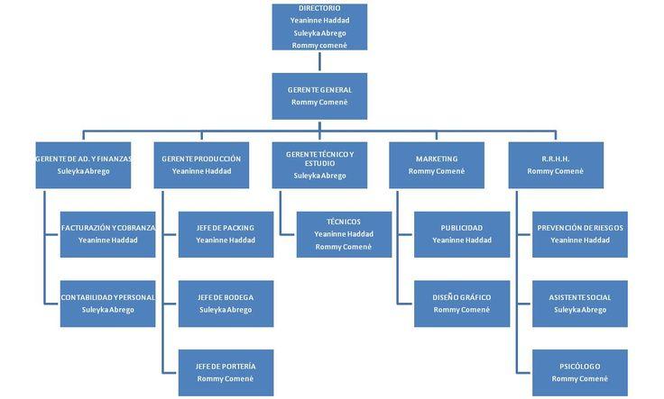 Importancia del organigrama en los negocios - Definición, finalidad, Tipos - Blog - Conduce Tu Empresa