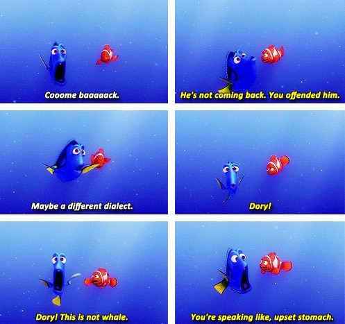 finding nemo marlin and dory relationship quotes