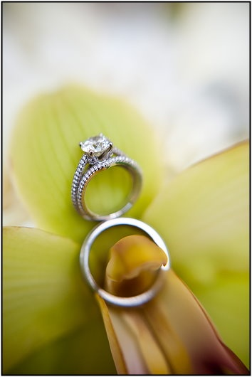 Paris Mountain Photography Wedding Rings With Flowers Orchid