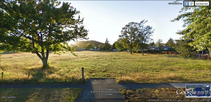Turangi primary rugby field
