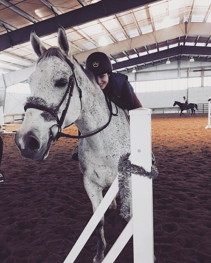 "L A U R E N R O S E (@laurenrose.fitness) on Instagram: """" horse riding equestrian fitness ottb thoroughbred"