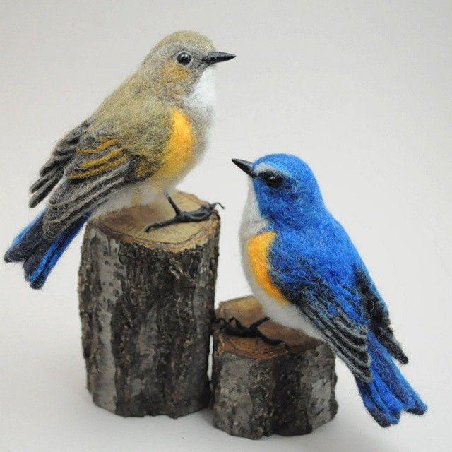 ルリビタキ ♀・♂ 幸せの青い鳥♪ Blue  bird of the happiness. #羊毛フェルト#ルリビタキ#フェルト#ニードル#ハンドメイド #野鳥#鳥 #needlefelting #Red-flanked bluetail#felting#work#handmade#wild bird#bird