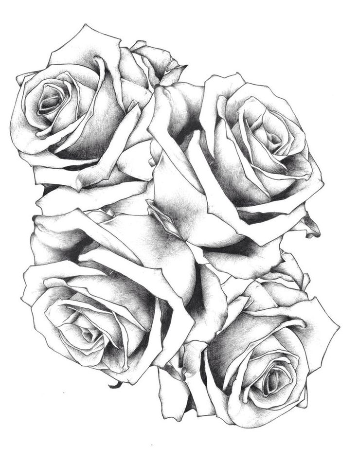 Ms de 25 ideas increbles sobre Two roses tattoo en Pinterest