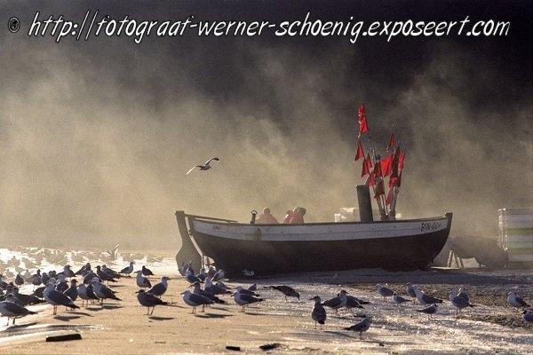 Werner Schönig is afkomstig uit Rostock en woont en werkt al sinds 2001 in Beverwijk. Hij is natuurkundige en werkt als projectmanager op het gebied van milieukunde. Fotografie is, naast schilderen, zijn hobby, waarbij natuur, dieren en vrouwelijke naakten de meest geliefde thema's zijn. Zie ook http://www.em-ha-em-art-productions.nl/mainport/foto/wernerfoto/