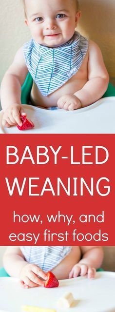 Baby-Led Weaning: how to save money and time while teaching your child to feed themselves. No baby food, no prep. The how, the why, and best first foods for baby.