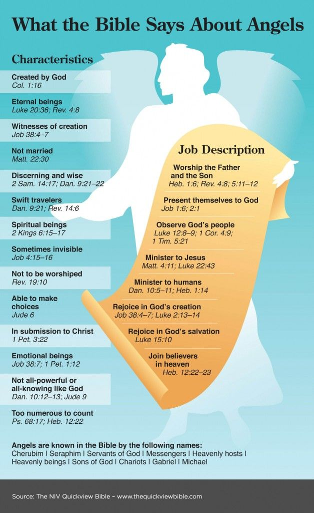 The Quick View Bible » What the Bible Says About Angels