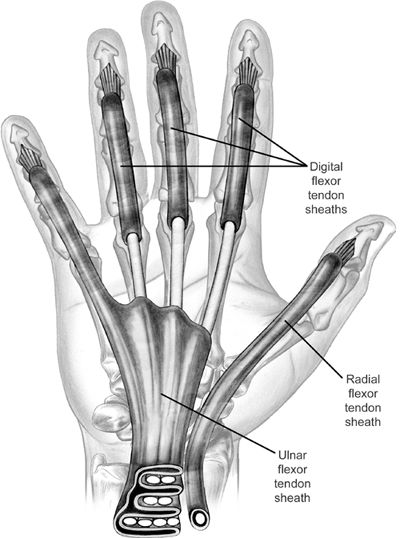 Thumb tendonitis massages