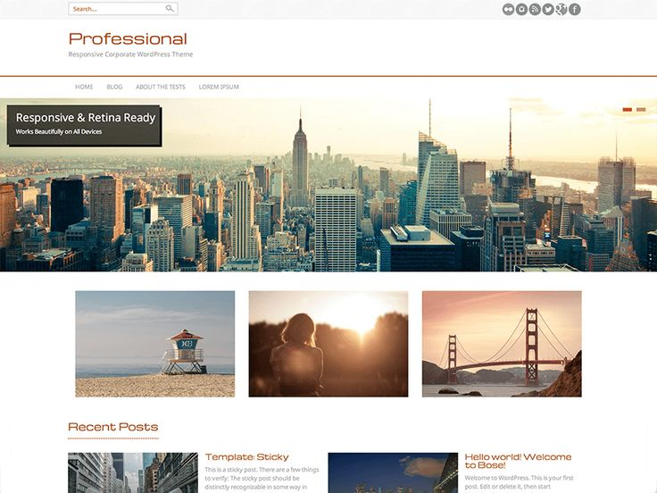 Professional — Free WordPress Themes