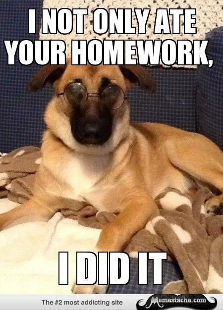 Google homework