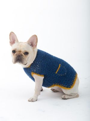 The Casual Friday Dog Sweater. Crochet this casual pullover for your dog for #NationalDogDay! Pattern calls for 2 - 4 balls of Heartland and a size I-9 crochet hook. Your pooch will love it!