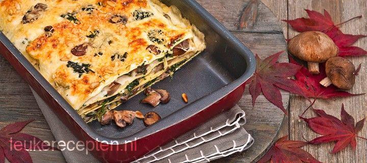 Lekker lasagne van paddestoelen, spinazie, pijnboompitten, parmaham met zelfgemaakte bechamelsaus