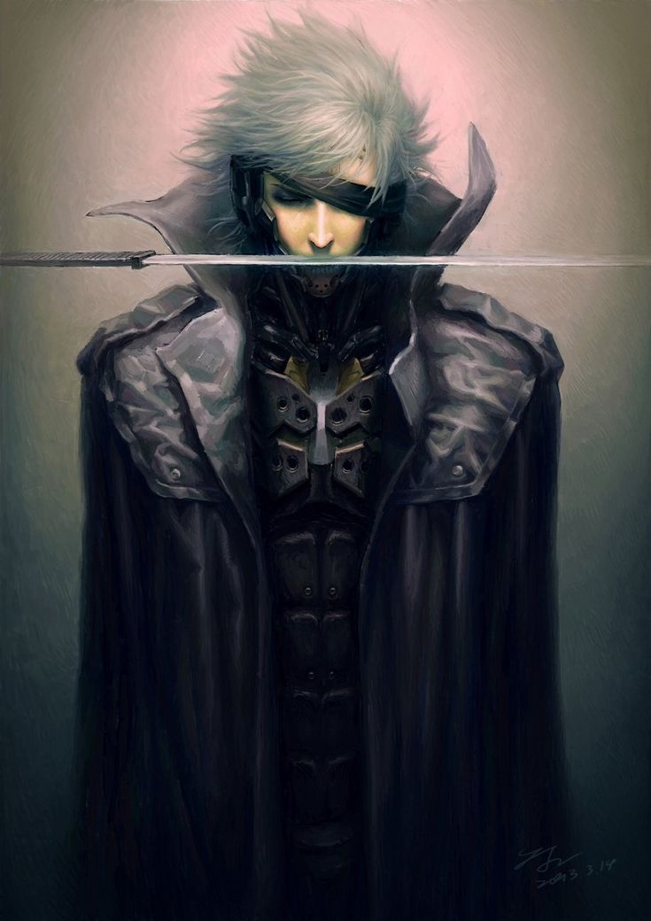 Interesting. It's Raiden from MGS4 and Rising in one pic. Cool!