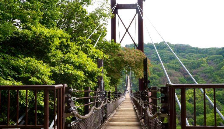 Hoshi no Buranko – Hiking Japan