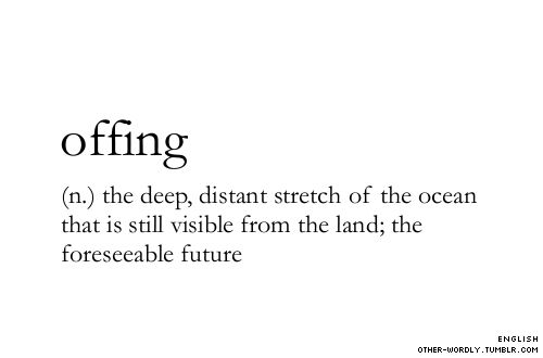 (n.) the deep, distant stretch of the ocean that is still visible from the land;  the foreseeable future