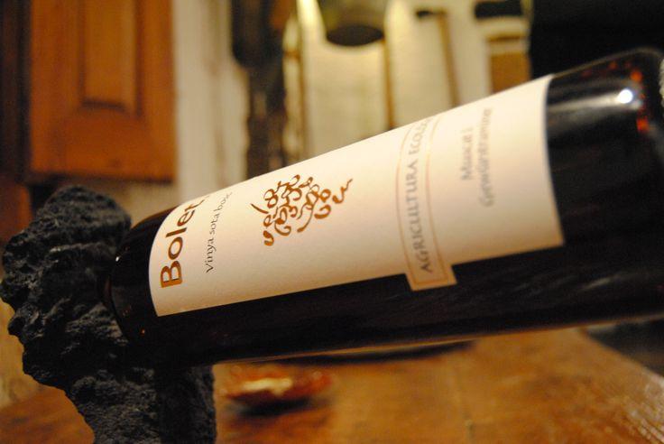 Vinya Sota Bosc DO.Penedès Bolet Wine (www.cavabolet.com)