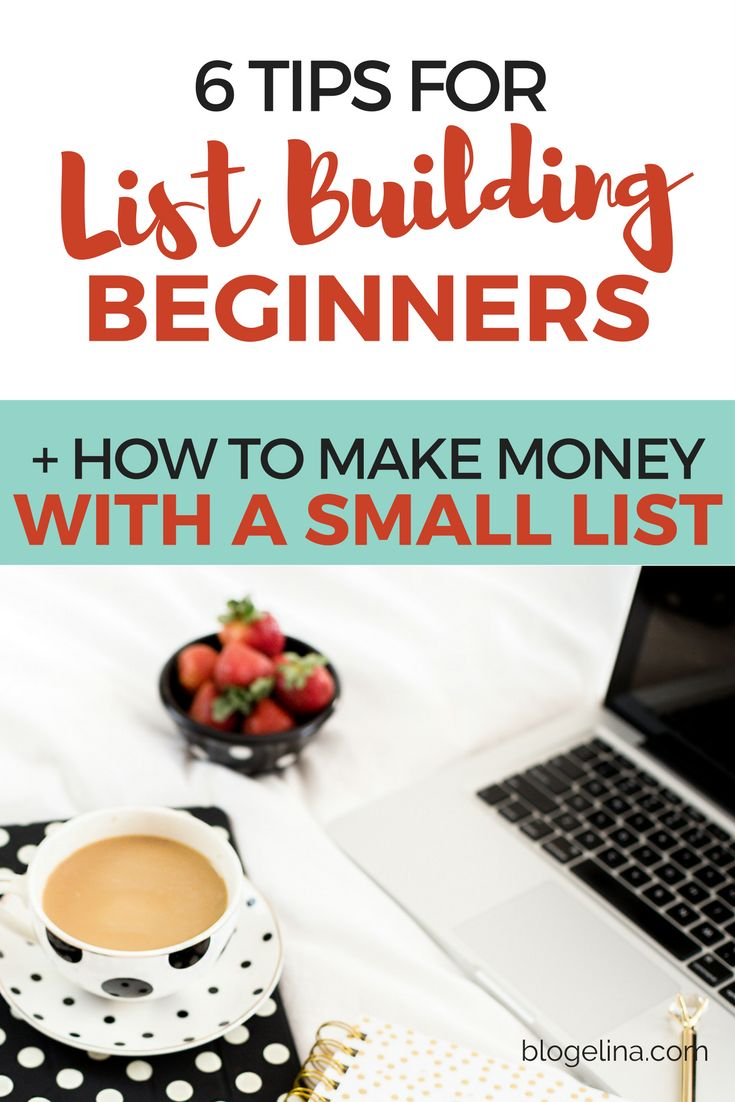 6 Tips for List Building Beginners + How To Make Money From A Small Email List | Blogelina