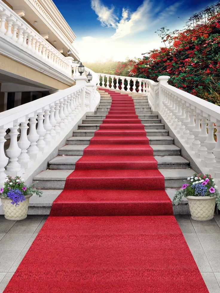 1000 Ideas About Red Carpet Backdrop On Pinterest