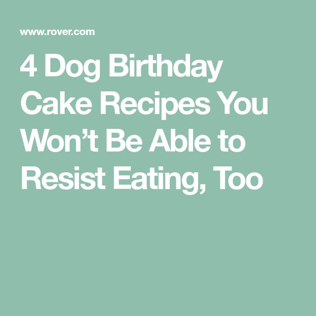4 Dog Birthday Cake Recipes You Won't Be Able to Resist Eating, Too